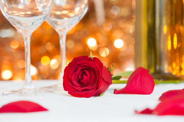 Romantic date setting. Red rose on a table.