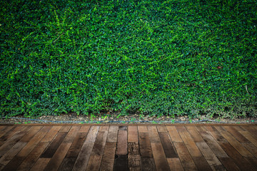 Wood floor with green leaves wall background