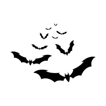 the bats vector