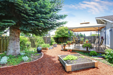Small garden beds at the backyard.