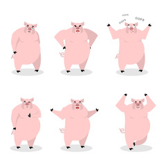 Pig set of different poses. Expression of wild boar emotions. Fa