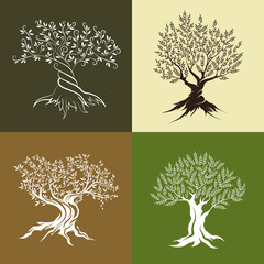 Olive trees silhouette isolated icon set. Web graphics modern vector sign.
