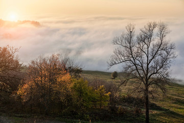 Landscape with valley mist at sunset, Langhe, Piedmont. Italy