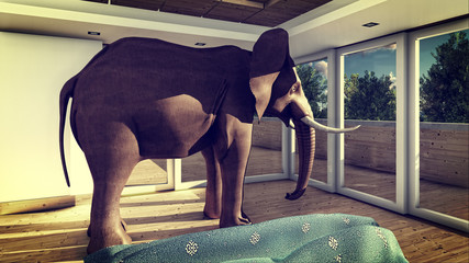 Elephant in the living room 3d rendering