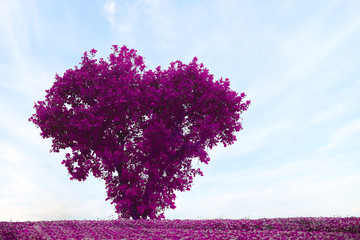 Pink tree in the shape of heart ,valentines day background