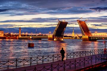 Panoramic view over Neva river in white night time, St Petersbur