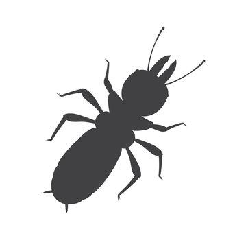 Termite Insect Silhouette Vector