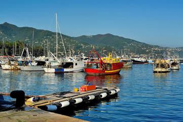 Boats in the port of Santa Margherita Ligure