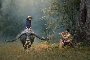 farmers Thailand.