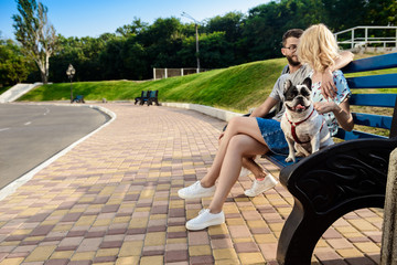 Beautiful couple sitting with French bulldog on bench in park.