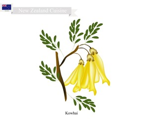 Kowhai Flowers, The National Flower of New Zealand
