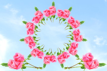 pink color rose flower in sky background