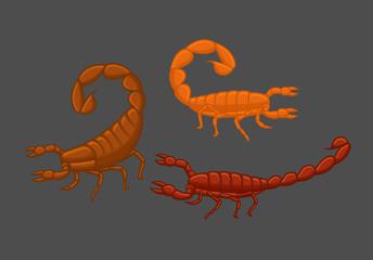 Wild Scorpions