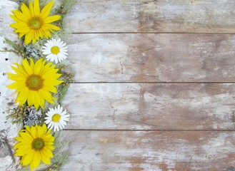 Birch Bark Sunflowers and Daisies on wood background with copy space.