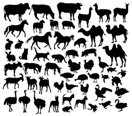 Farm Animal Silhouettes, art vector design