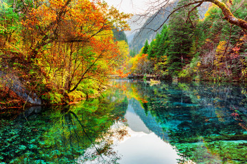 The Five Flower Lake. Colorful fall forest reflected in water