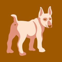 bull terrier dog vector illustration style Flat