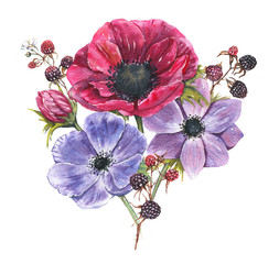Hand-drawn watercolor illustration of the floral bouquet. Tender spring drawing of violet and pink anemones flowers and blackberry in the composition