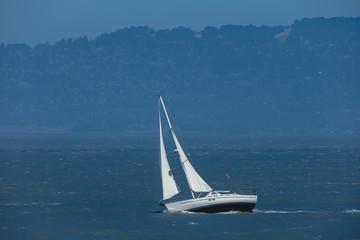White yacht sails