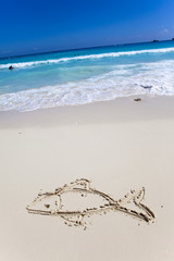 fish- a picture on sand