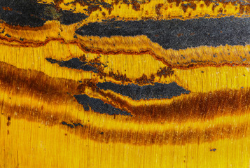 tigers eye in macro detail
