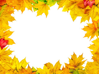 Wall Mural - Bunte Herbstblätter als Hintergrund