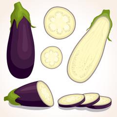 Eggplant set iolated on white background. Whole, sliced, half of fresh aubergine. Vector illustration.