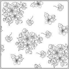 Apple tree flowers pattern. Good for coloring book for adult and older children or like greeting card for birthday, Valentines day or wedding. Vector illustration. Outline drawing.