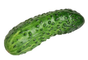 Cucumber it is isolated on a white background