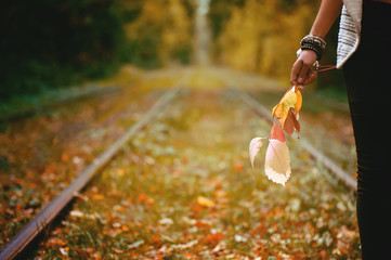 wooman sitting on rail trails and holding colorful autumn leaves