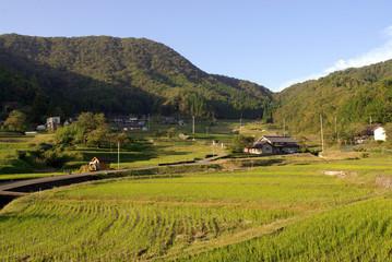 Terraced rice fields called Tanada,Oecho,Fukuchiyama,Kyoto,Japan