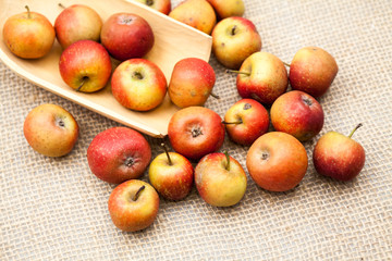 Small, red apples with burlap texture in the background