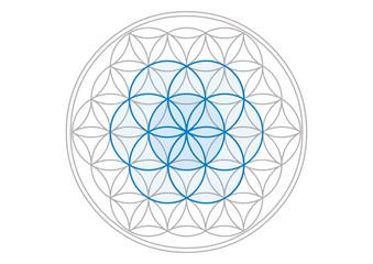 Seed of Life ( Saat des Lebens ) - Blume des Lebens