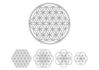 Blume des Lebens - Heilige Geometrie - Vektor Silber - Set