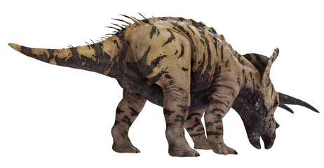 3D rendering of Triceratops feeding, isolated on white background.