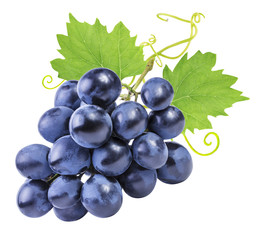 Fototapete - grapes isolated on the white background