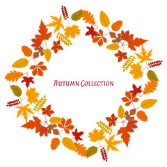 Autumn frame. Vector background. Vector illustration. Floral vector pattern. Fashion Graphic Design. Beauty concept. Bright colors leaves. Template for prints, textile, wrapping and decoration.