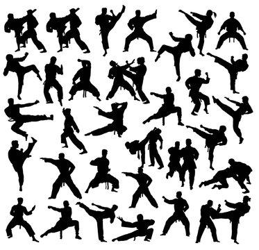 School ff Karate Silhouettes, art vector design