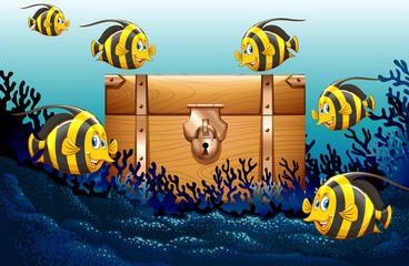Fish swimming under the ocean