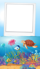 Frame design with ocean scene