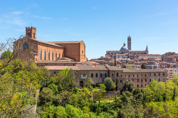 View of the city of Siena in Italy Duomo di Siena and cateriniana San Domenico