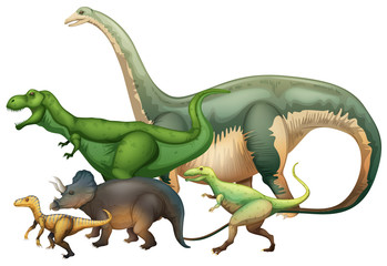 Many dinosaurs on white background