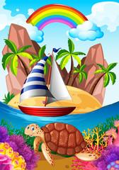 Ocean scene with turtle underwater