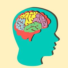 Paper brain illustration