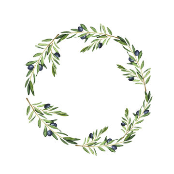 Olive tree wreath painted by watercolor. Design for menu, wedding invitation or greeting card. Hand drawn vector illustration.