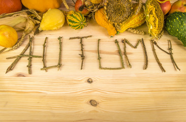 Autumn word and agricultural harvest-The word autumn written out of tree twigs on a wooden background, with the results of the harvest like, pumpkins, corn, wheat and sunflower.