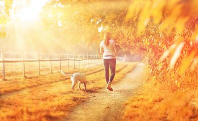 Gelbe Herbstlandschaft - eine junge Frau geht mit ihrem Hund spazieren während des Sonnenuntergangs