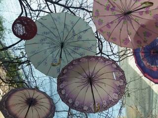 Şemsiye isteyen var mı
