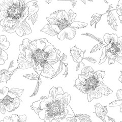 Seamless pattern outline flowers peony, black white background. Peonies monochrome.