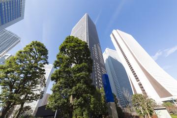 新宿高層ビル群 快晴 青空 超広角で見上げる センタービル前
